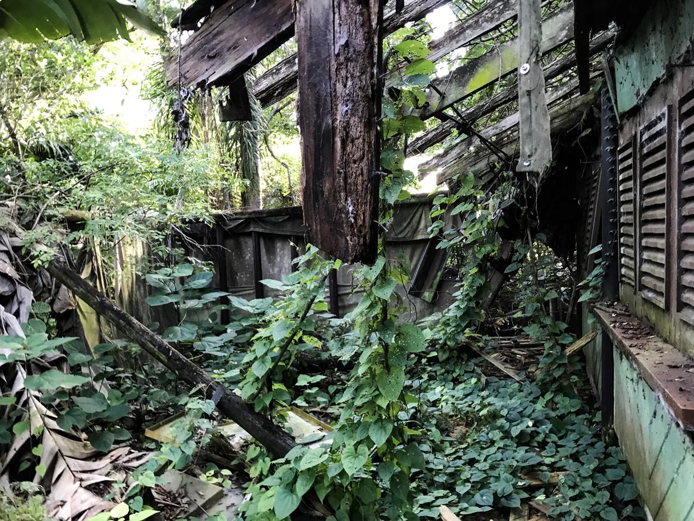 Discovery Island Abandoned