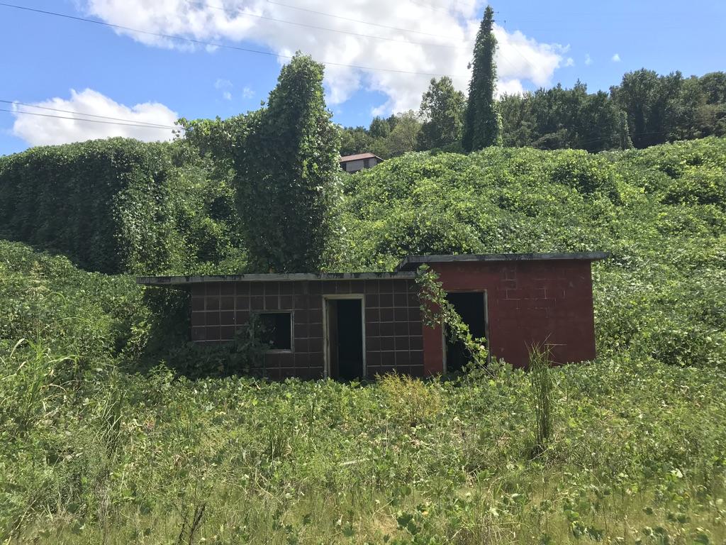Abandoned Bham
