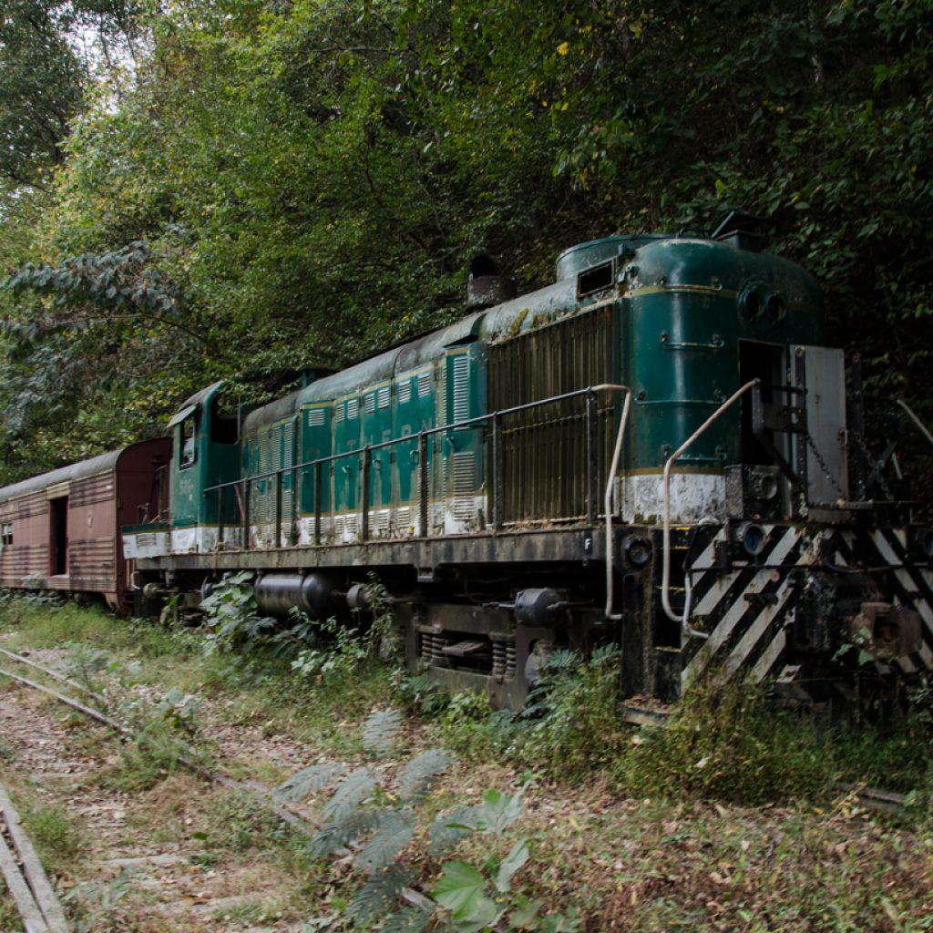 Brushy Mountain Train